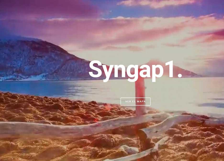 syngap_map_1